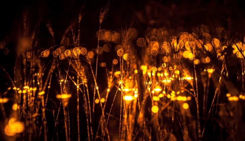 Vinterljus från Hubsch lampor lyser upp i mörkret